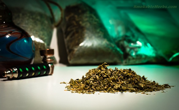 What Herbs Can You Smoke? | damiana1