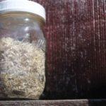 Marshmallow roots