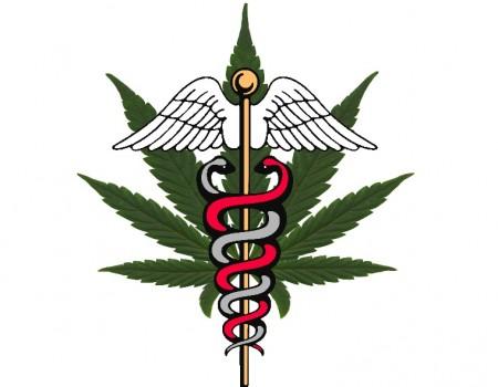 Government Finally Admits Cannabis Kills Cancer