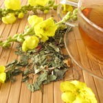 Wormwood | tea with mullein flowers